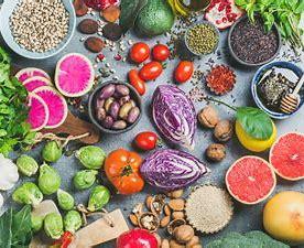 福島麻里専任管理栄養士による栄養管理サポート開始